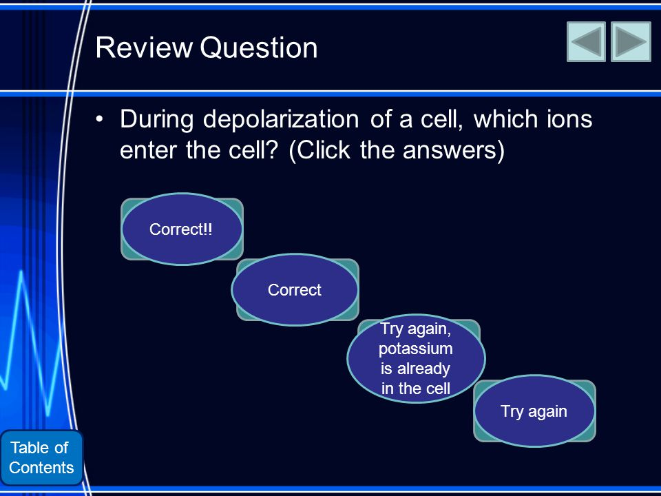 Table of Contents Review Question During depolarization of a cell, which ions enter the cell.