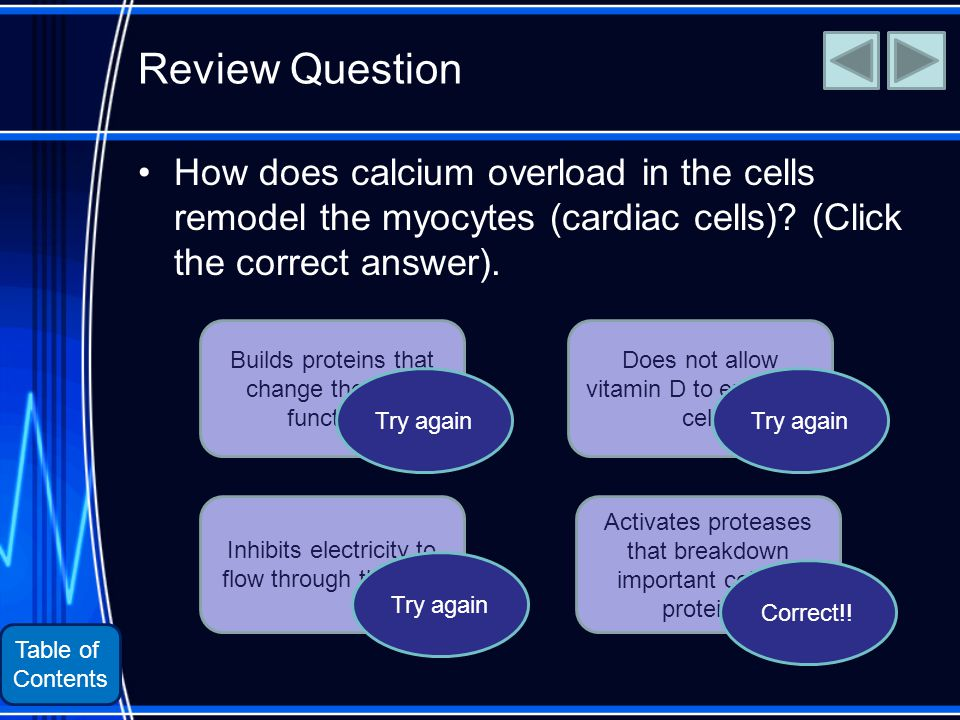Table of Contents Review Question How does calcium overload in the cells remodel the myocytes (cardiac cells).