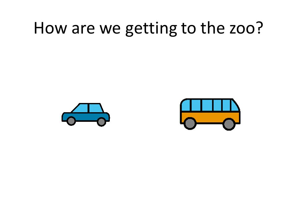 How are we getting to the zoo?