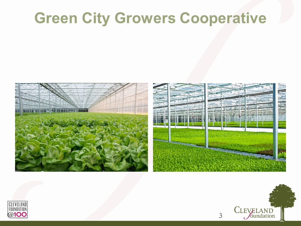 Green City Growers Cooperative 3