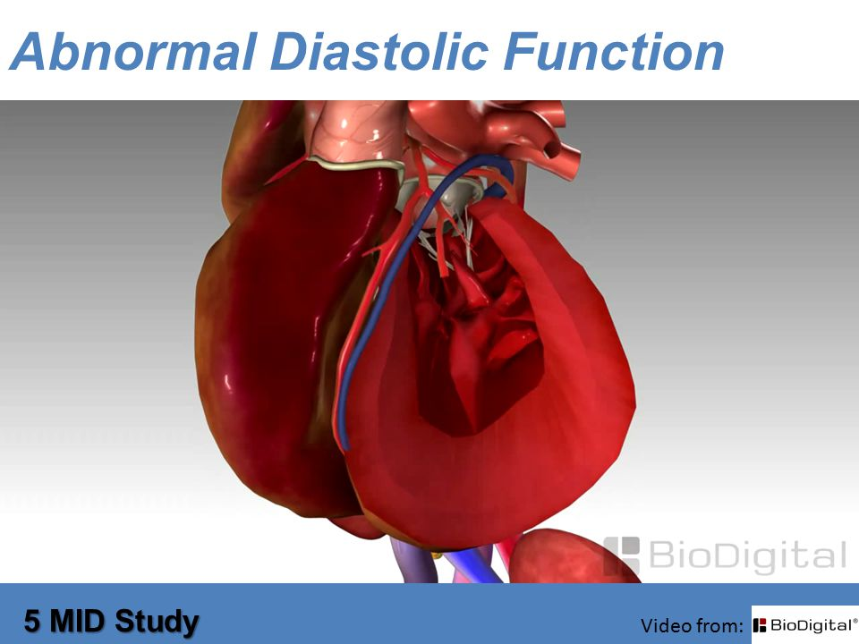 Abnormal Diastolic Function 5 MID Study Video from: