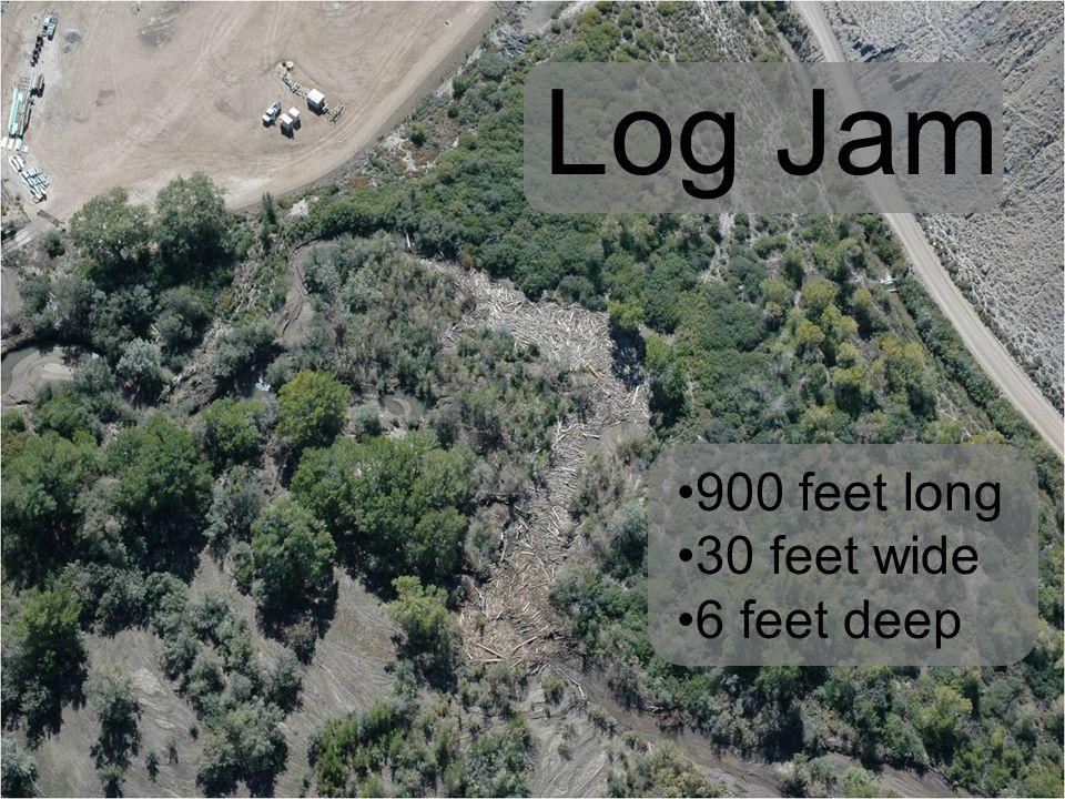 900 feet long 30 feet wide 6 feet deep Log Jam