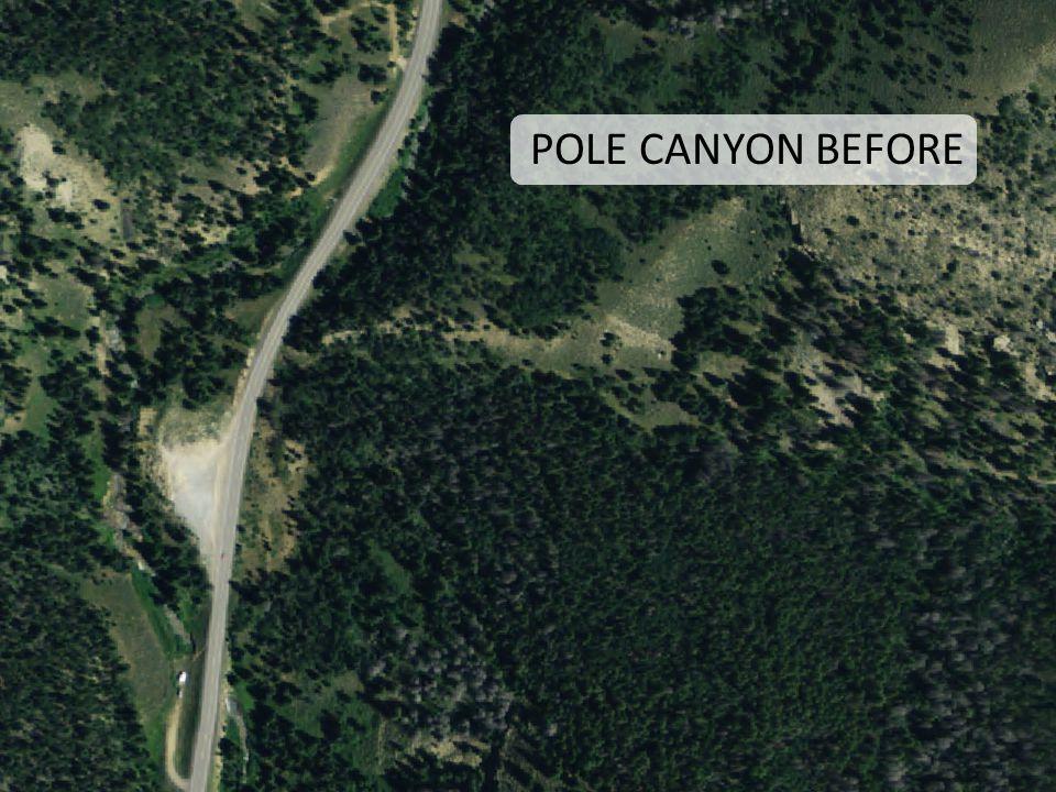 POLE CANYON BEFORE