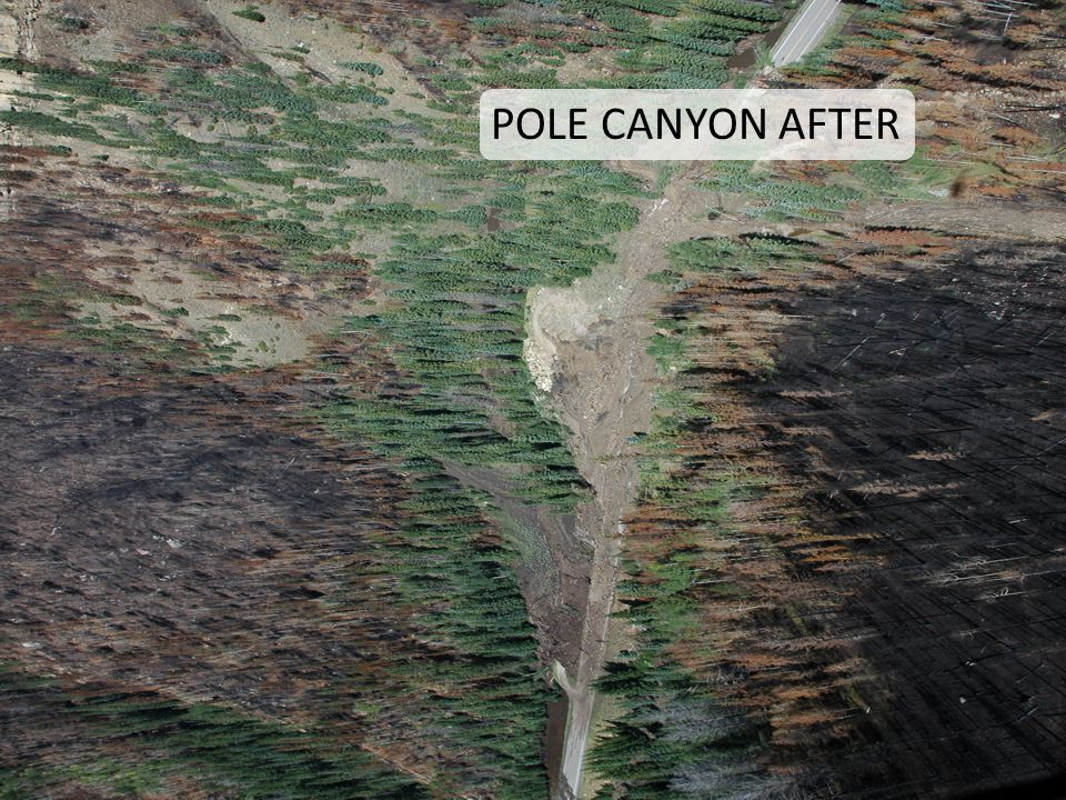 POLE CANYON AFTER