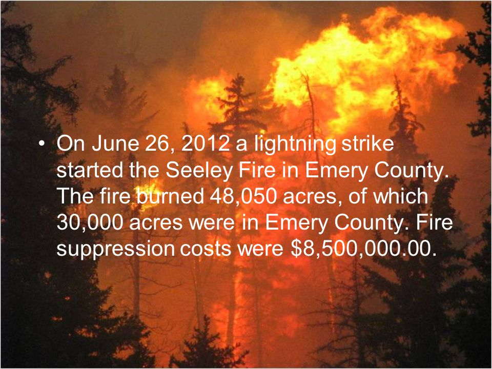 On June 26, 2012 a lightning strike started the Seeley Fire in Emery County.