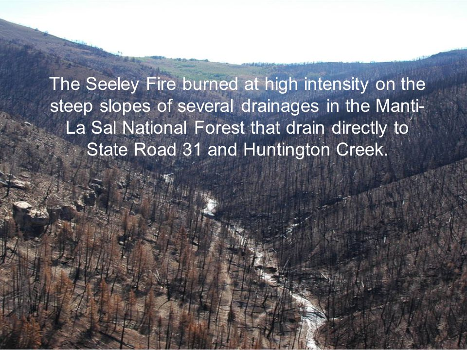 The Seeley Fire burned at high intensity on the steep slopes of several drainages in the Manti- La Sal National Forest that drain directly to State Ro