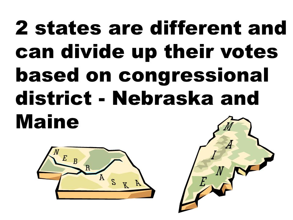 2 states are different and can divide up their votes based on congressional district - Nebraska and Maine