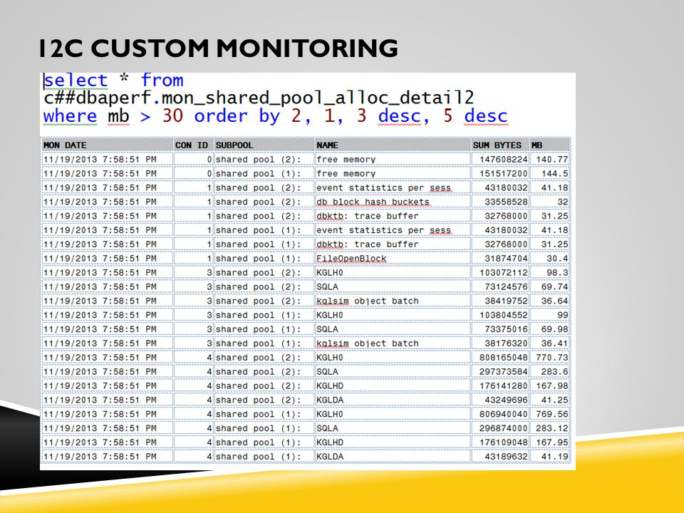 12C CUSTOM MONITORING