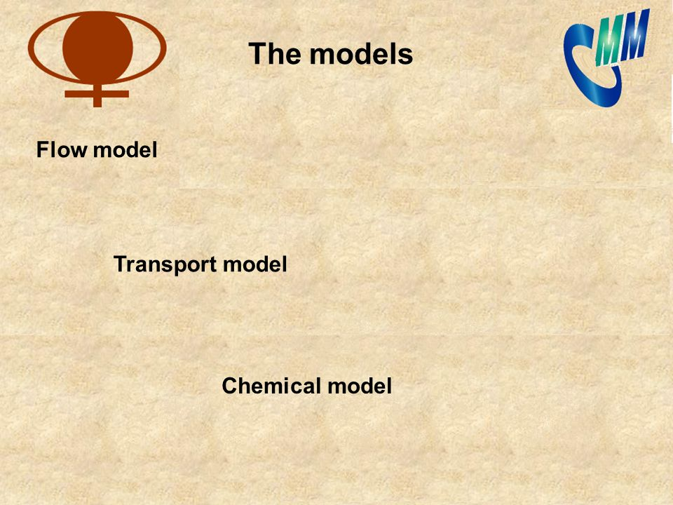 Flow model Transport model Chemical model The models