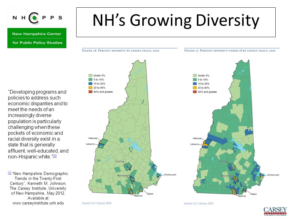 "NH's Growing Diversity ""Developing programs and policies to address such economic disparities and to meet the needs of an increasingly diverse populat"
