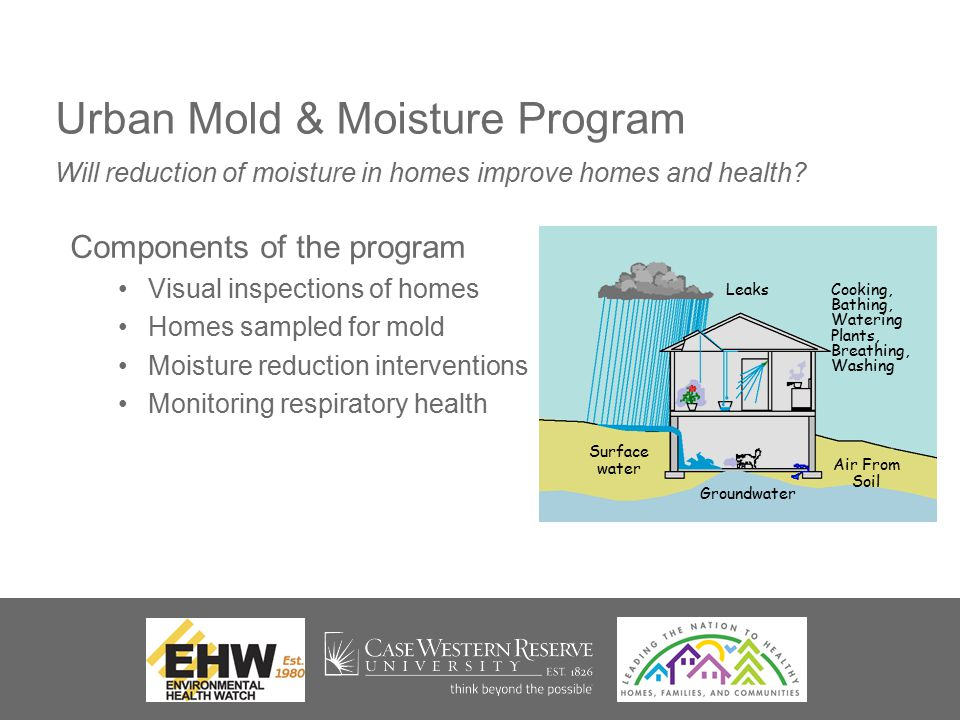 Urban Mold & Moisture Program Components of the program Visual inspections of homes Homes sampled for mold Moisture reduction interventions Monitoring respiratory health Will reduction of moisture in homes improve homes and health.