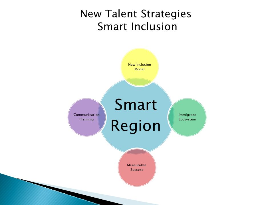 New Talent Strategies Smart Inclusion Smart Region New Inclusion Model Immigrant Ecosystem Measurable Success Communication Planning