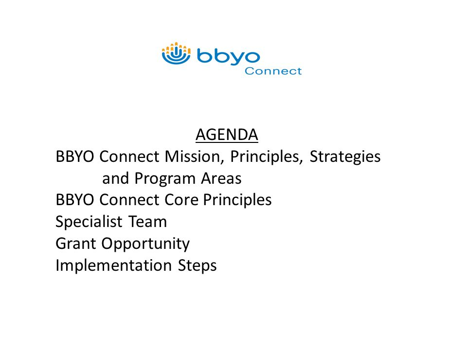 AGENDA BBYO Connect Mission, Principles, Strategies and Program Areas BBYO Connect Core Principles Specialist Team Grant Opportunity Implementation Steps
