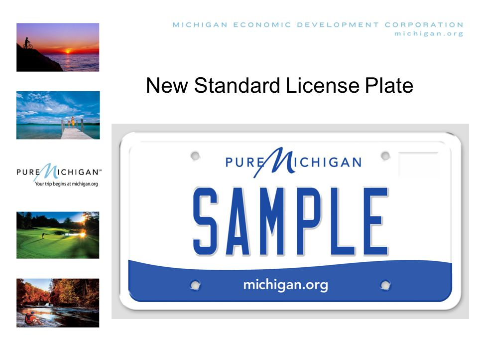 New Standard License Plate