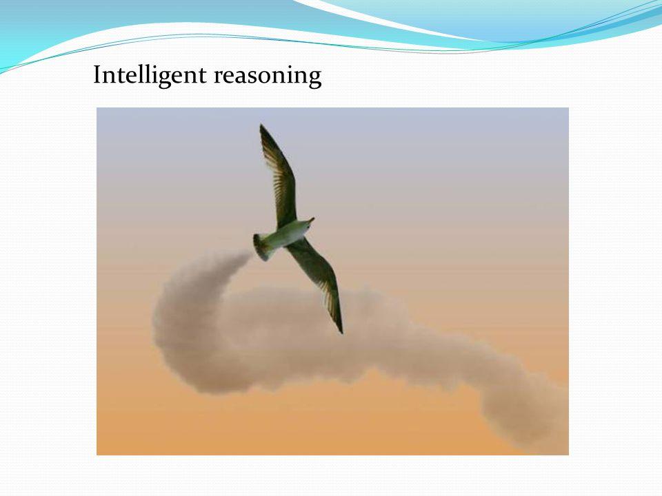 Intelligent reasoning