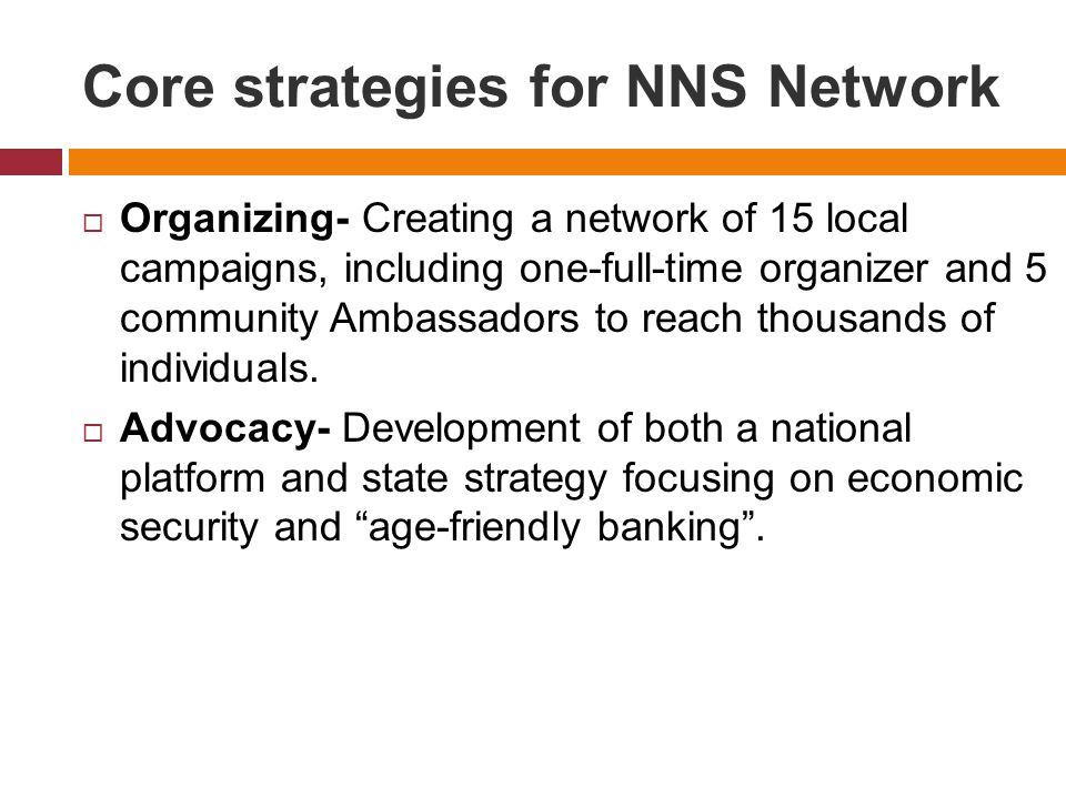 Core strategies for NNS Network  Organizing- Creating a network of 15 local campaigns, including one-full-time organizer and 5 community Ambassadors to reach thousands of individuals.
