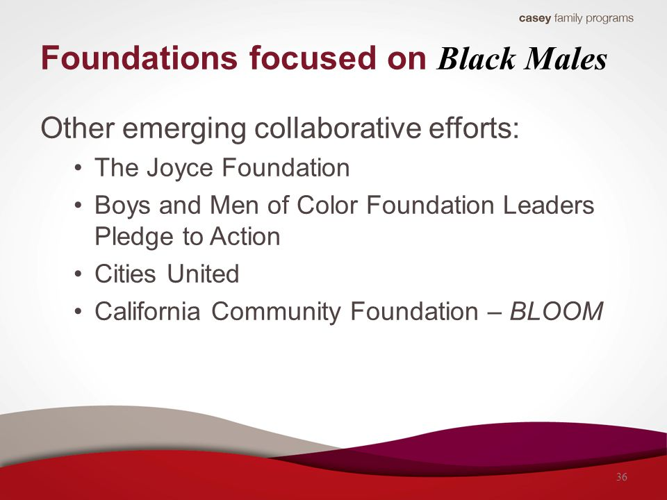 Other emerging collaborative efforts: The Joyce Foundation Boys and Men of Color Foundation Leaders Pledge to Action Cities United California Community Foundation – BLOOM Foundations focused on Black Males 36