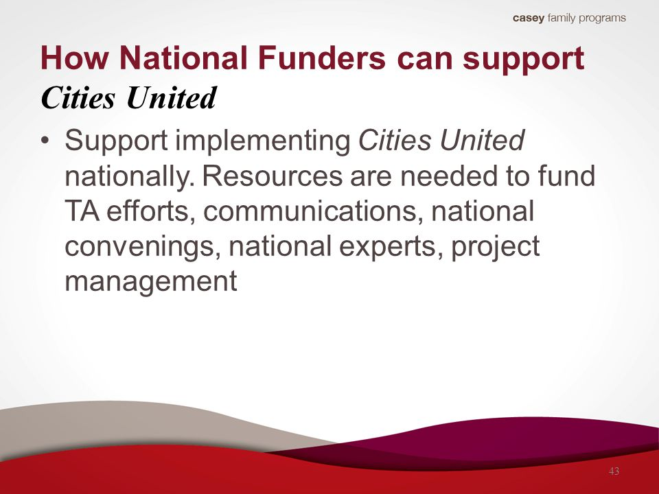 Support implementing Cities United nationally. Resources are needed to fund TA efforts, communications, national convenings, national experts, project