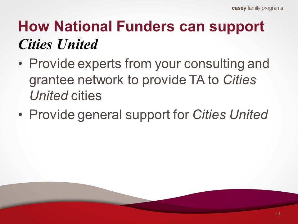 Provide experts from your consulting and grantee network to provide TA to Cities United cities Provide general support for Cities United How National
