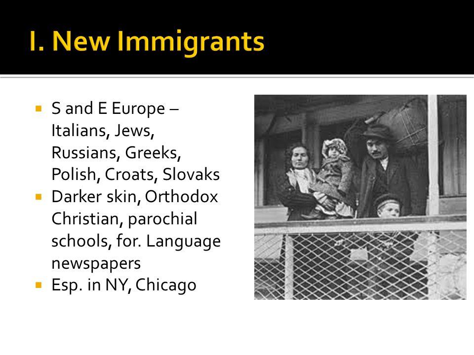  S and E Europe – Italians, Jews, Russians, Greeks, Polish, Croats, Slovaks  Darker skin, Orthodox Christian, parochial schools, for. Language newsp