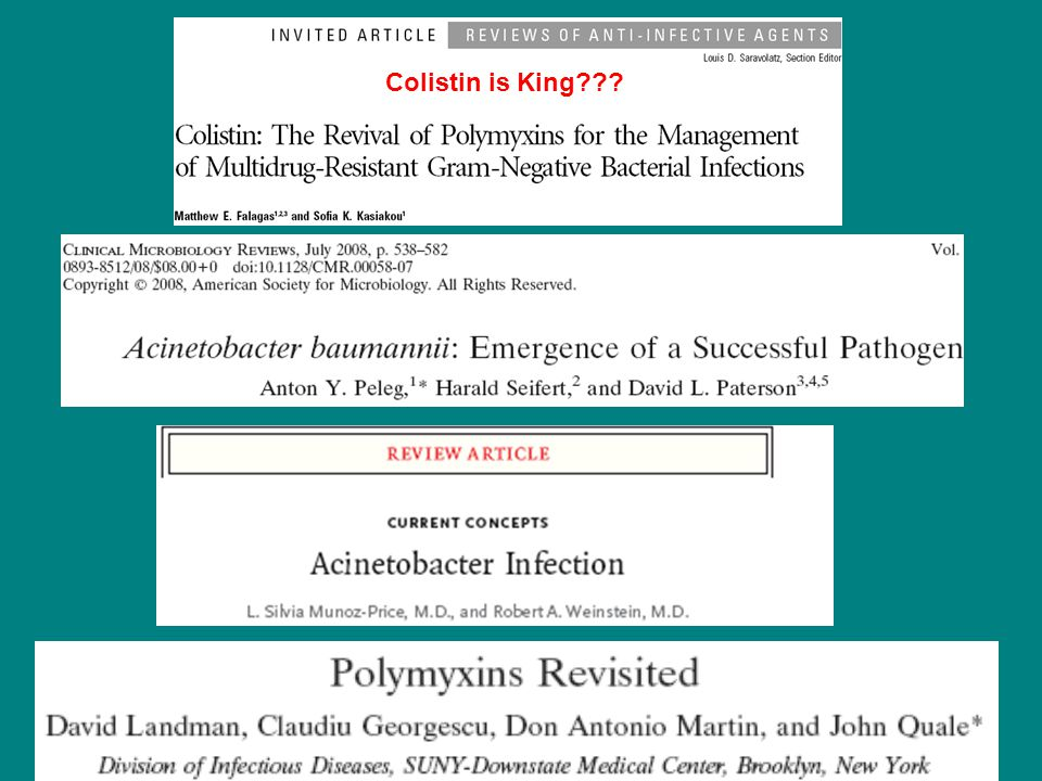 Colistin is King???