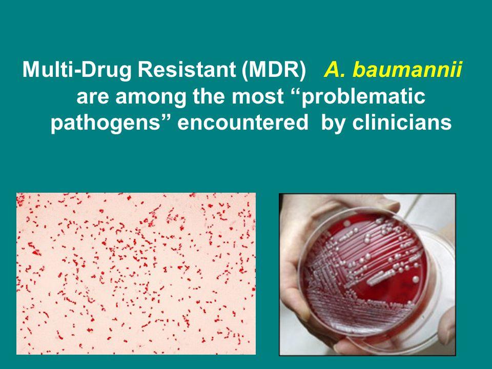 Multi-Drug Resistant (MDR) A.