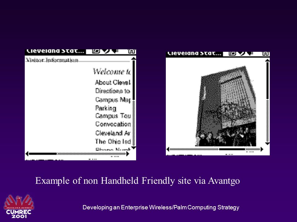 Example of Handheld Friendly Site via Avangto