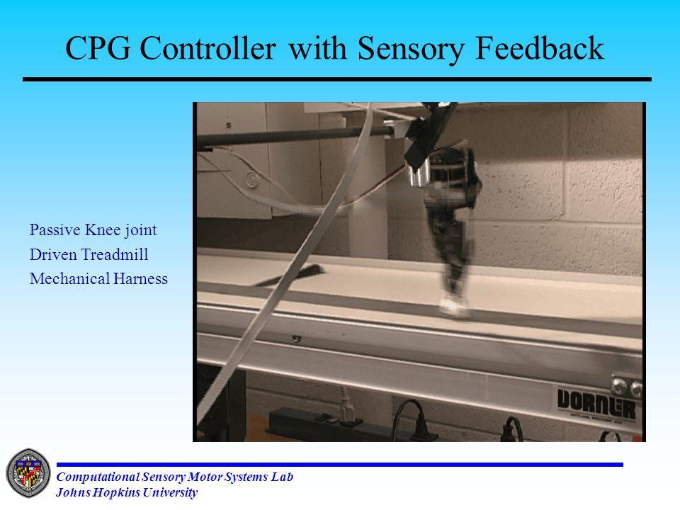 Computational Sensory Motor Systems Lab Johns Hopkins University CPG based Running Reality Check