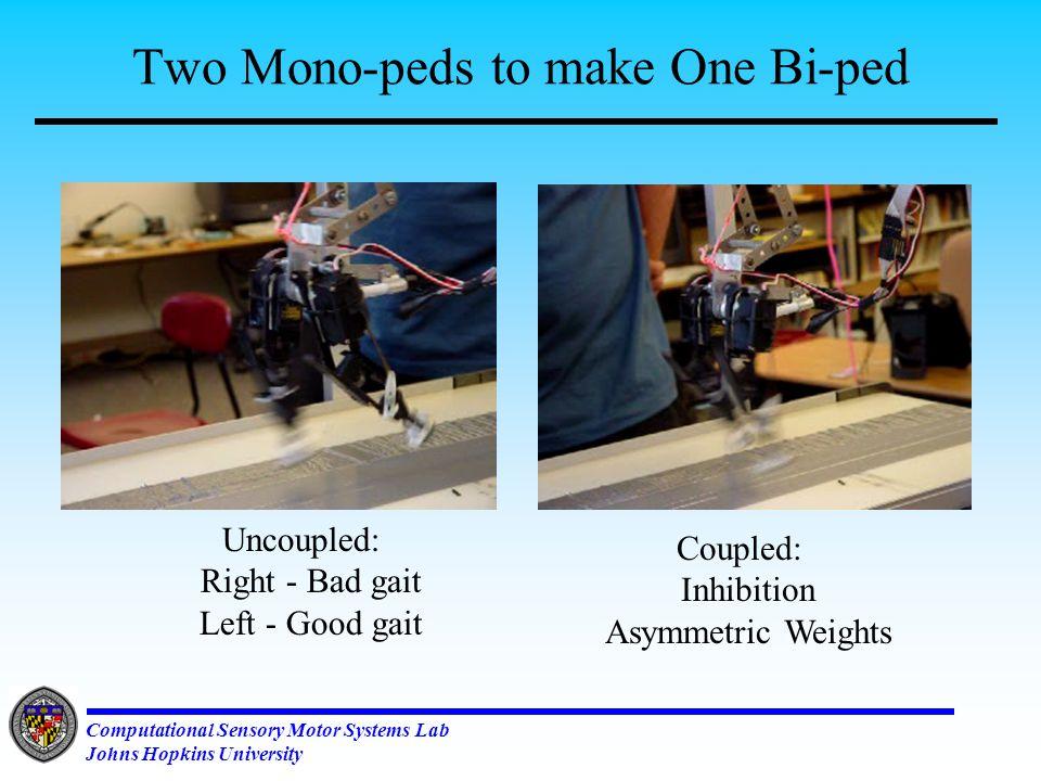 Computational Sensory Motor Systems Lab Johns Hopkins University Two Mono-peds -- One Bi-ped