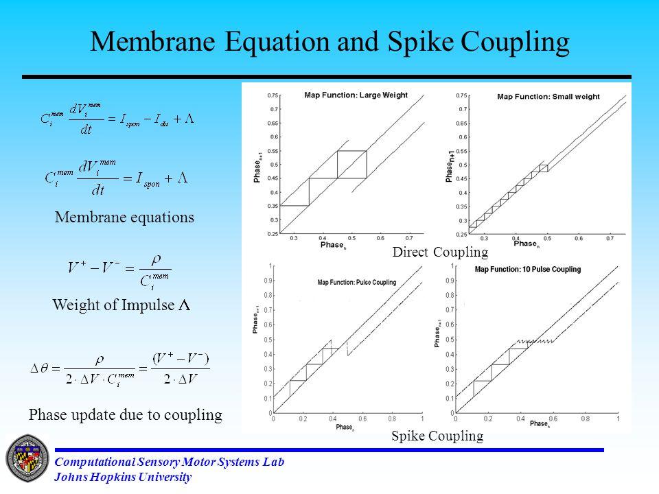 Computational Sensory Motor Systems Lab Johns Hopkins University How do we couple these oscillators: Spike Based Coupling