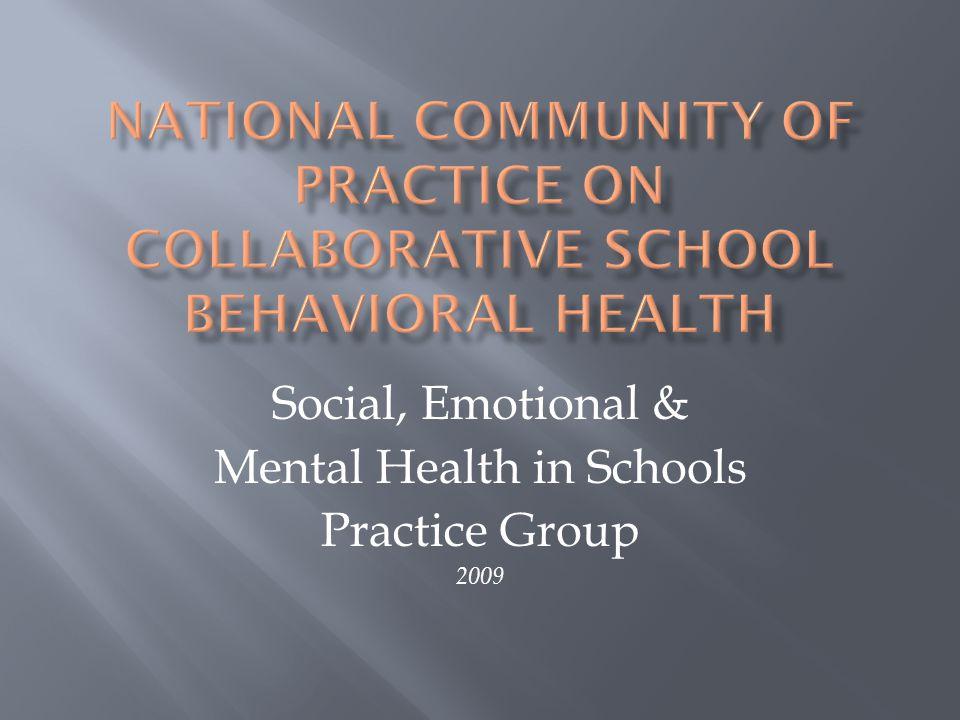 Social, Emotional & Mental Health in Schools Practice Group 2009