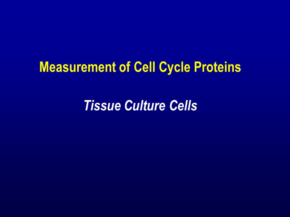 Measurement of Cell Cycle Proteins Tissue Culture Cells
