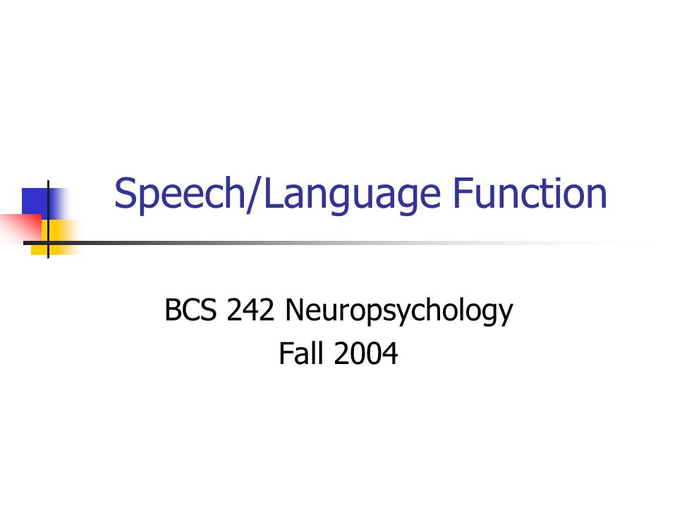 Speech/Language Function BCS 242 Neuropsychology Fall 2004