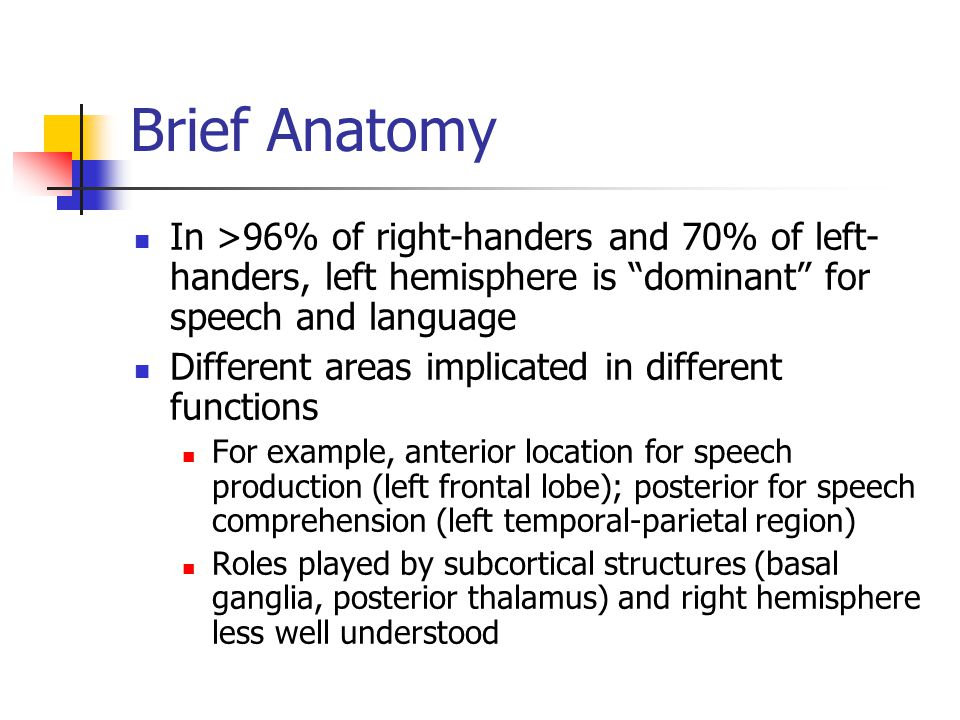 Brief Anatomy In >96% of right-handers and 70% of left- handers, left hemisphere is dominant for speech and language Different areas implicated in different functions For example, anterior location for speech production (left frontal lobe); posterior for speech comprehension (left temporal-parietal region) Roles played by subcortical structures (basal ganglia, posterior thalamus) and right hemisphere less well understood
