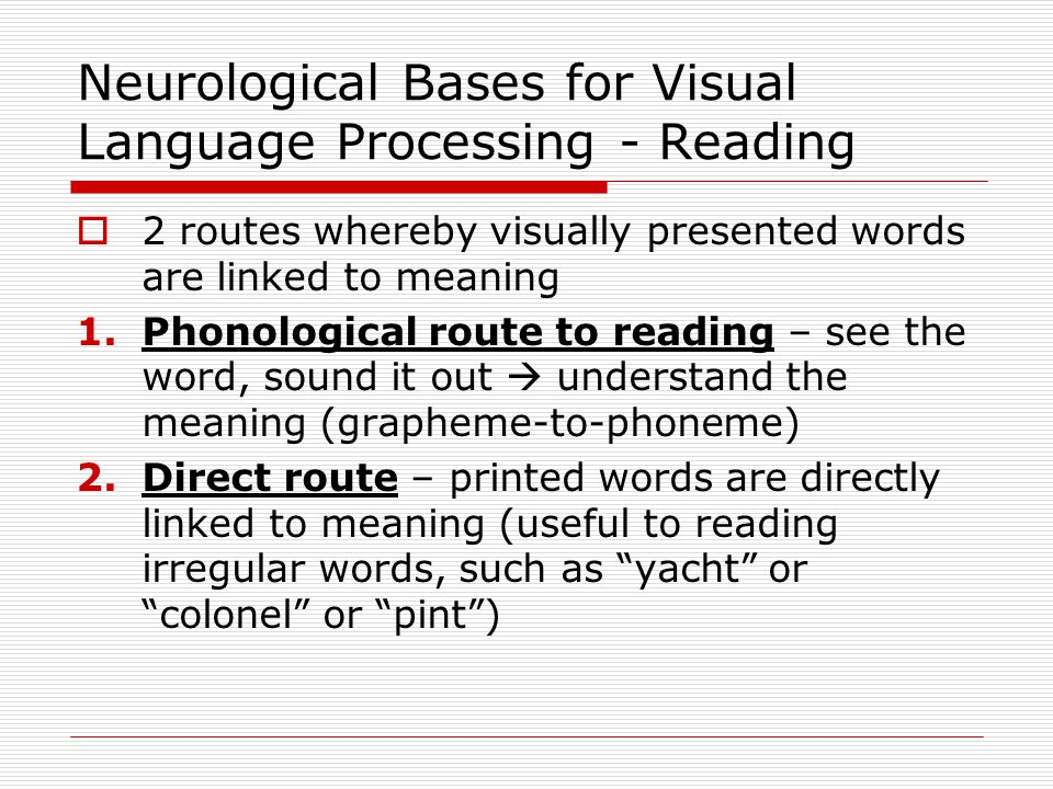 Reading – Two Routes Neuropsychological Evidence  Damage to direct route  Surface alexia  Reading by sound  Can not recognize words but can understand them by using grapheme-to-phoneme relations  Words can be understood if they are 'sounded' out  Regular words are read normally ( home or dome )  Irregular words are not read properly: yacht, debt, ache or quay.