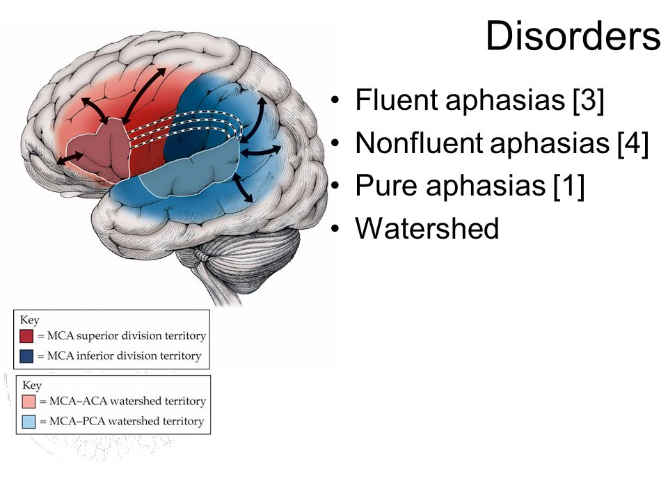 Disorders Fluent aphasias [3] Nonfluent aphasias [4] Pure aphasias [1] Watershed