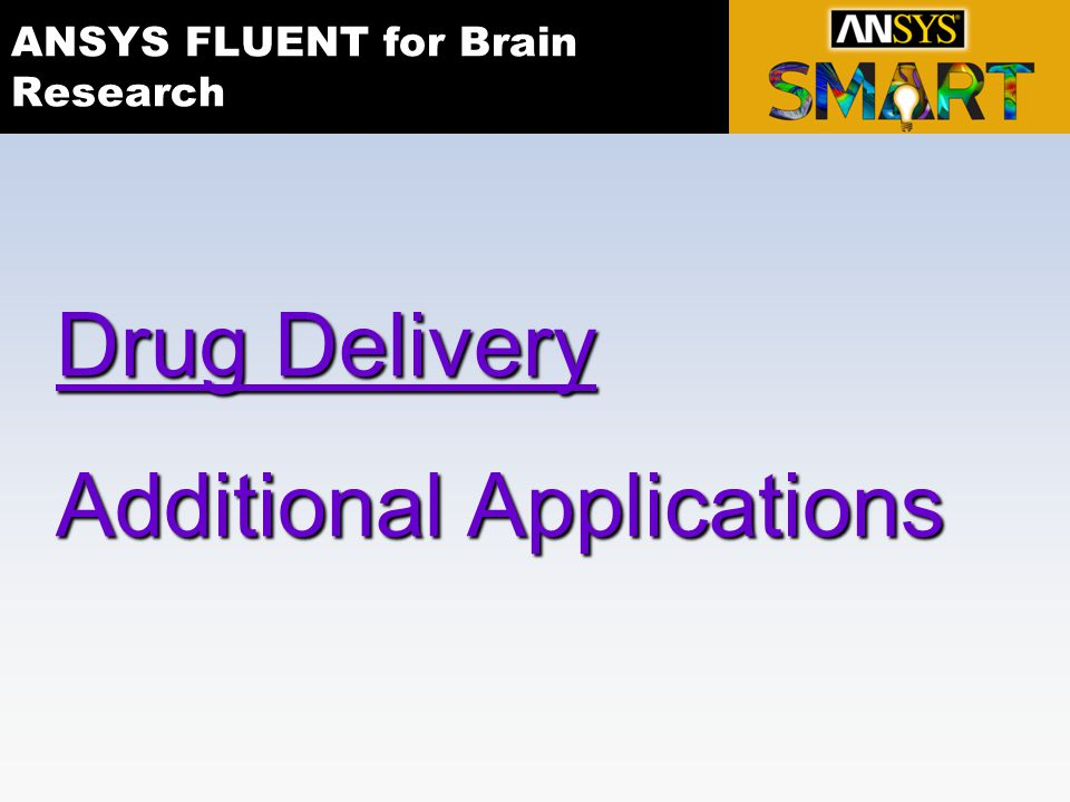ANSYS FLUENT for Brain Research Drug Delivery Additional Applications
