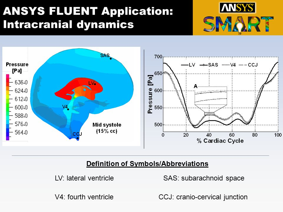 ANSYS FLUENT Application: Intracranial dynamics LV: lateral ventricleSAS: subarachnoid space V4: fourth ventricleCCJ: cranio-cervical junction Definit