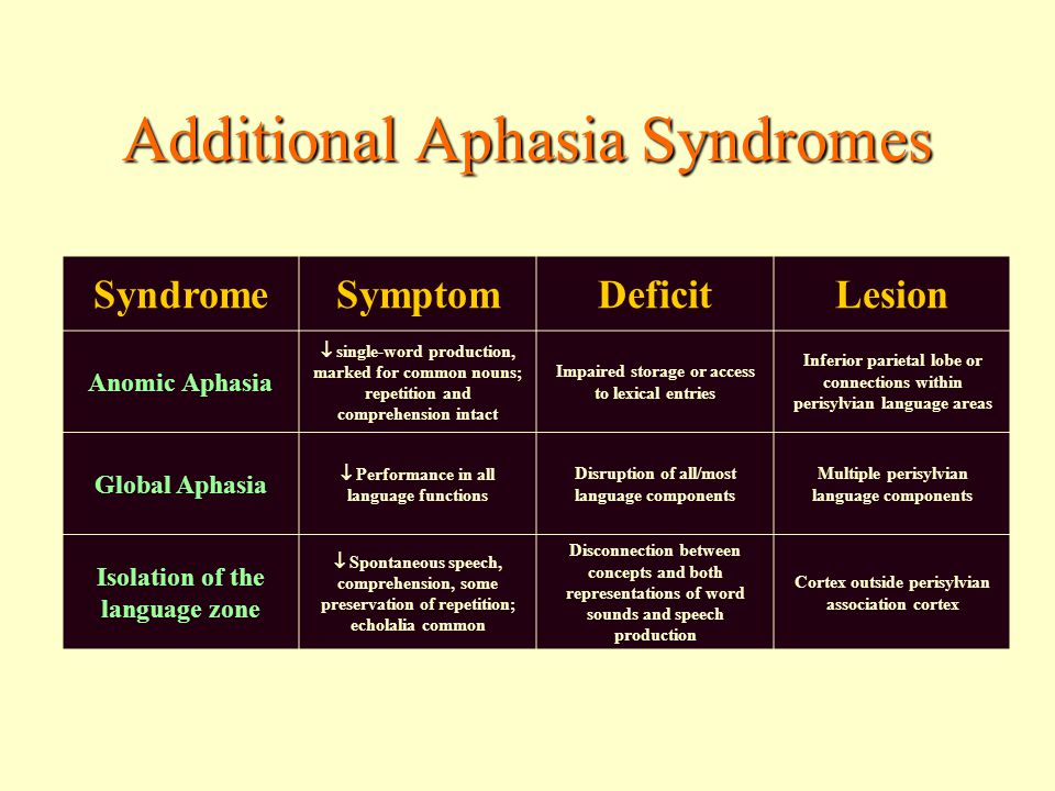 Additional Aphasia Syndromes SyndromeSymptomDeficitLesion Anomic Aphasia  single-word production, marked for common nouns; repetition and comprehension intact Impaired storage or access to lexical entries Inferior parietal lobe or connections within perisylvian language areas Global Aphasia  Performance in all language functions Disruption of all/most language components Multiple perisylvian language components Isolation of the language zone  Spontaneous speech, comprehension, some preservation of repetition; echolalia common Disconnection between concepts and both representations of word sounds and speech production Cortex outside perisylvian association cortex