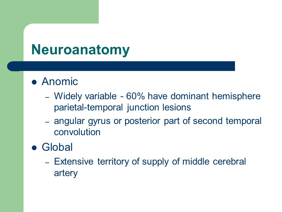 Neuroanatomy Anomic – Widely variable - 60% have dominant hemisphere parietal-temporal junction lesions – angular gyrus or posterior part of second temporal convolution Global – Extensive territory of supply of middle cerebral artery