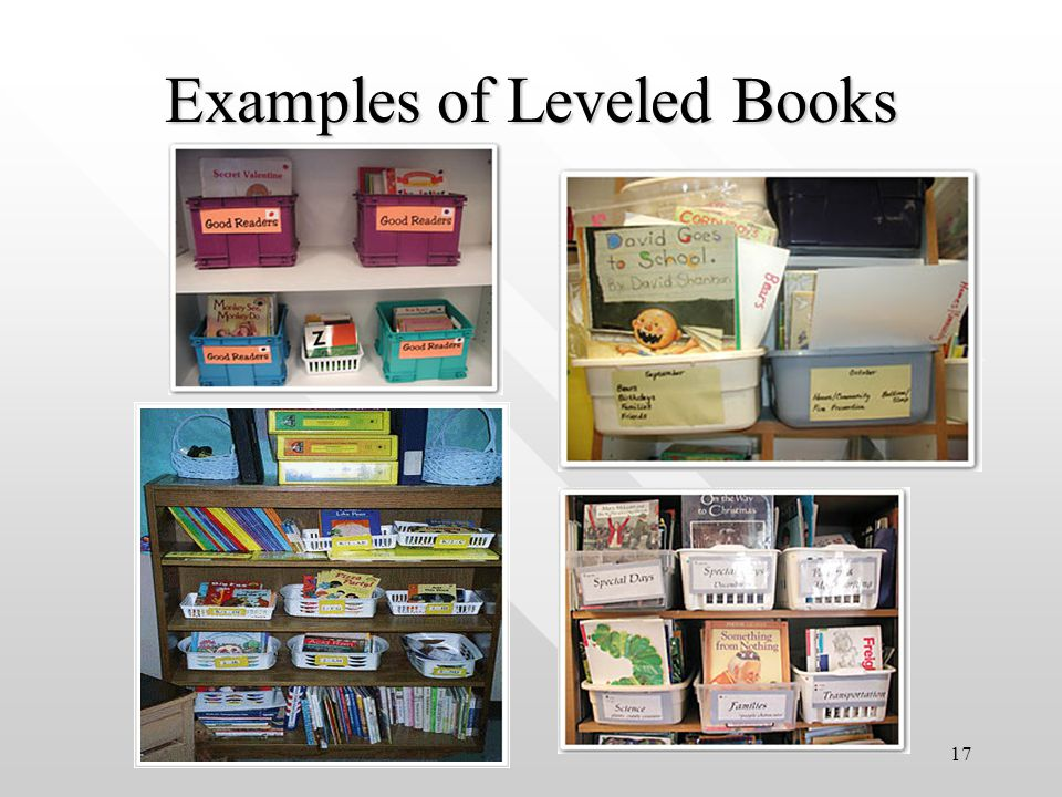 17 Examples of Leveled Books