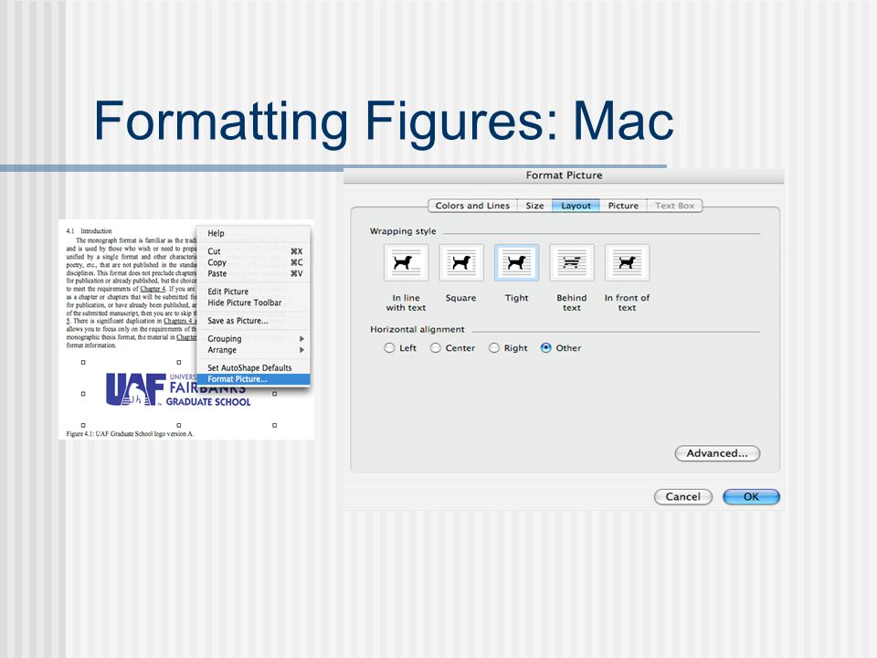 Formatting Figures: Mac
