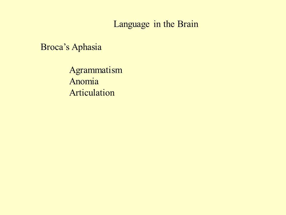 Language in the Brain Broca's Aphasia Agrammatism Anomia Articulation