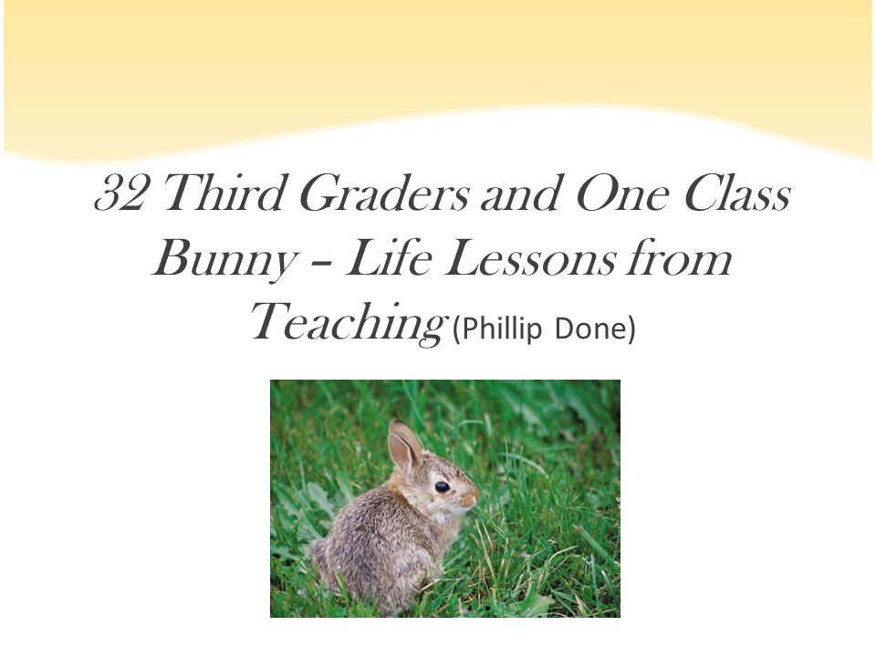 32 Third Graders and One Class Bunny – Life Lessons from Teaching (Phillip Done)
