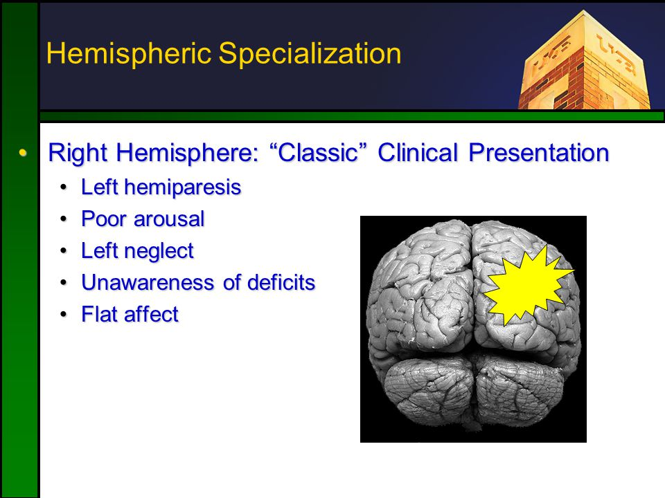 "Hemispheric Specialization Right Hemisphere: ""Classic"" Clinical PresentationRight Hemisphere: ""Classic"" Clinical Presentation Left hemiparesisLeft hem"