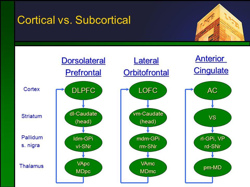 Cortical vs. Subcortical Cortex Striatum Pallidum s.