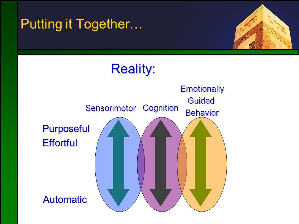 Putting it Together… Sensorimotor Cognition EmotionallyGuidedBehavior Reality: PurposefulEffortful Automatic