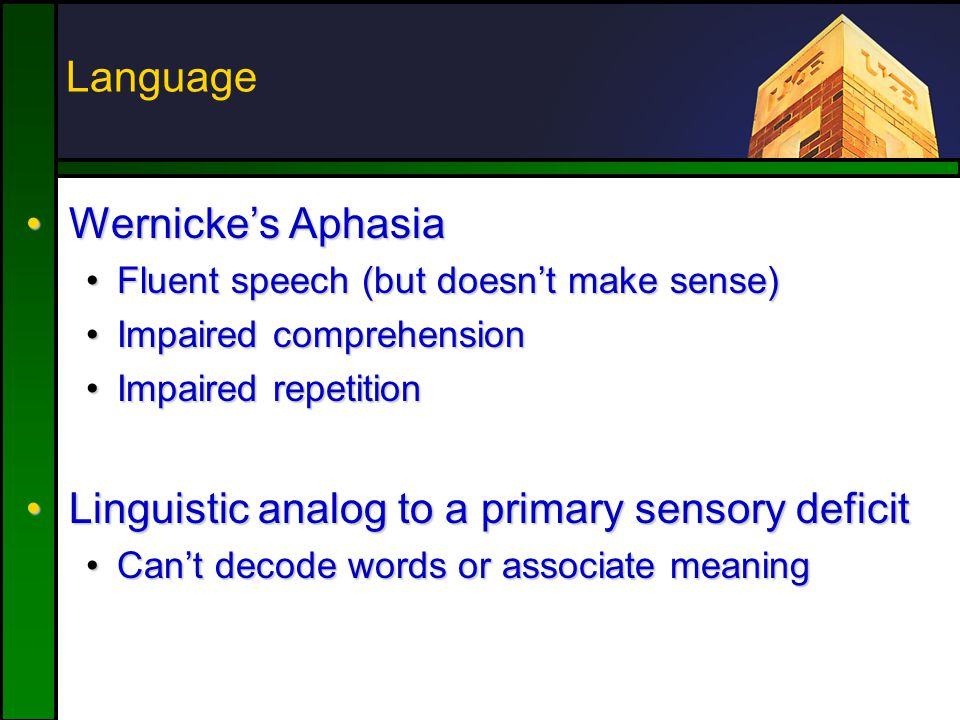 Wernicke's AphasiaWernicke's Aphasia Fluent speech (but doesn't make sense)Fluent speech (but doesn't make sense) Impaired comprehensionImpaired comprehension Impaired repetitionImpaired repetition Linguistic analog to a primary sensory deficitLinguistic analog to a primary sensory deficit Can't decode words or associate meaningCan't decode words or associate meaning