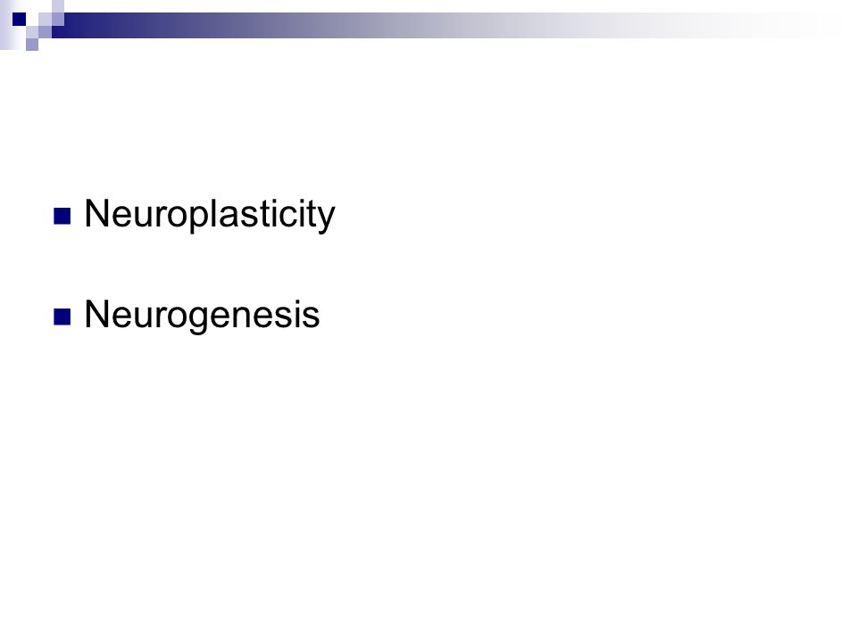 Neuroplasticity Neurogenesis