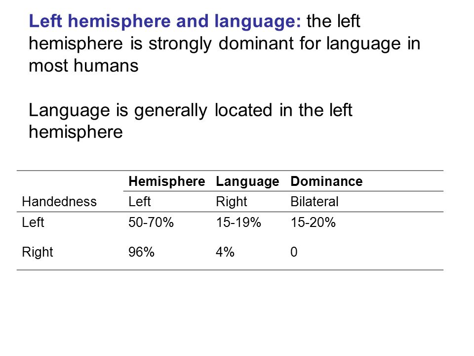Left hemisphere and language: the left hemisphere is strongly dominant for language in most humans Language is generally located in the left hemispher